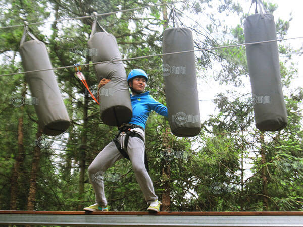 belay system, high ropes, protection system