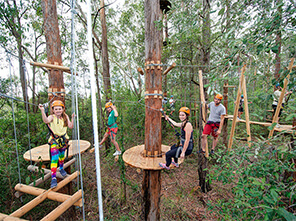 ropes course, treetop adventure course, climbing wall