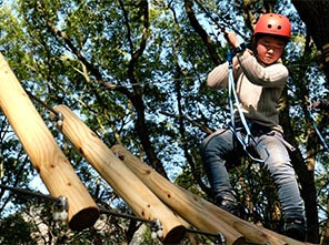 canopy challenge course, treetop challenge course