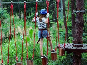 treetop adventure course, forest challenge course