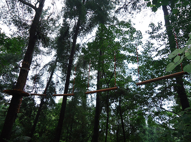 Forest Treetop Ropes Course