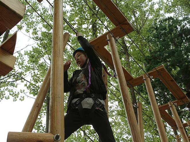 Artificial Treetop Adventure Park, forest adventure course