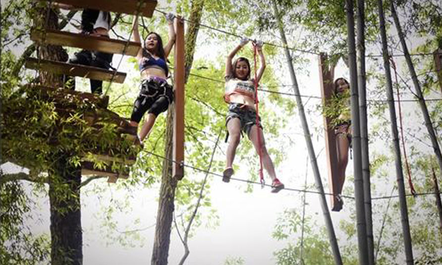 Tree Tops Ropes Course, tree top adventure park, treetop challenge