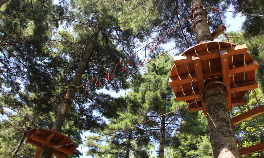 [!--Tree Top Adventure Park, tree top challenge, treetop challenge, treetop ropes course--]