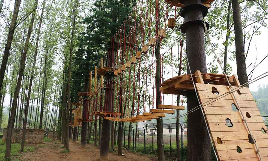 treetop challenge course, forest adventure course, canopy adventure course, obstacle course, adventure park